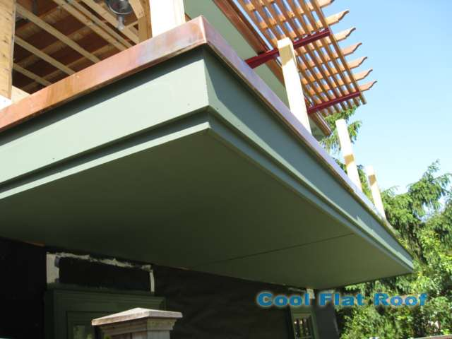 image of Flat Roof Deck with Copper Drip Edge Metal