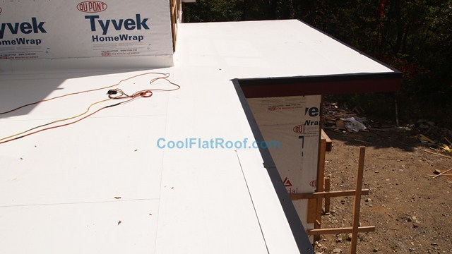 IB Cool Flat Roof with dark bronze edge metal
