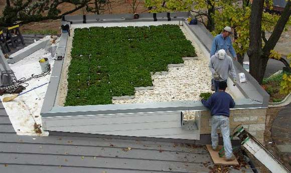 IB Roof and Green Roofing Blocks create a perfect combination for a long lasting, easy to maintain and inexpensive green roof.