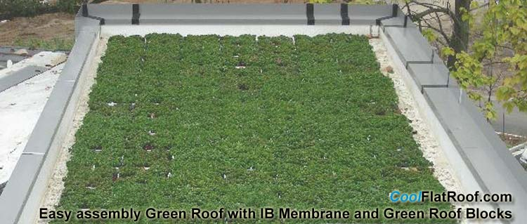 Green Roof blocks and IB single ply PVC Membrane