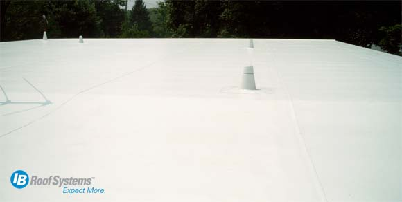 Ib Flat Roofing In New York Cool Flat Roof
